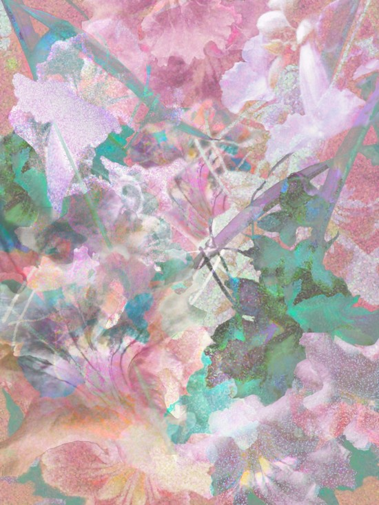 Floral Fantasy 1, Digital Fine Art Printed on Archival Photo Rag 40