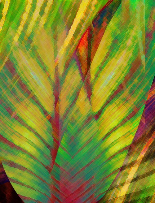 Tropical Abstract 2 21